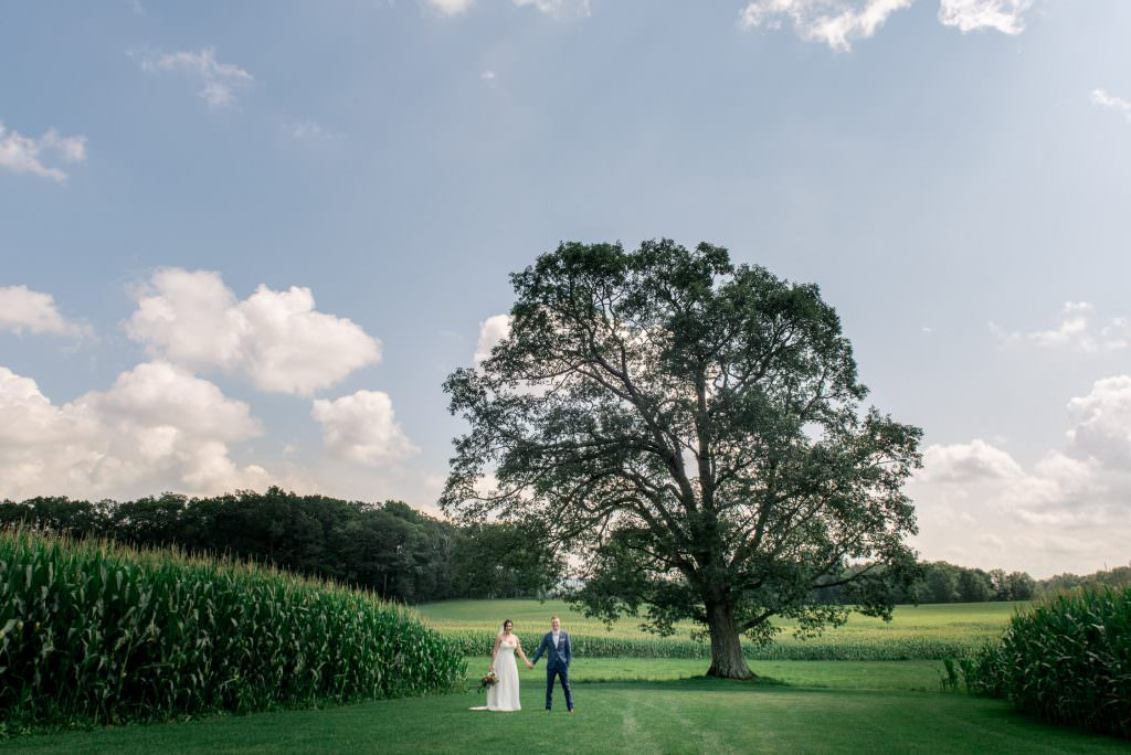 Creative wedding photo of bride and groom underneath big Oak tree