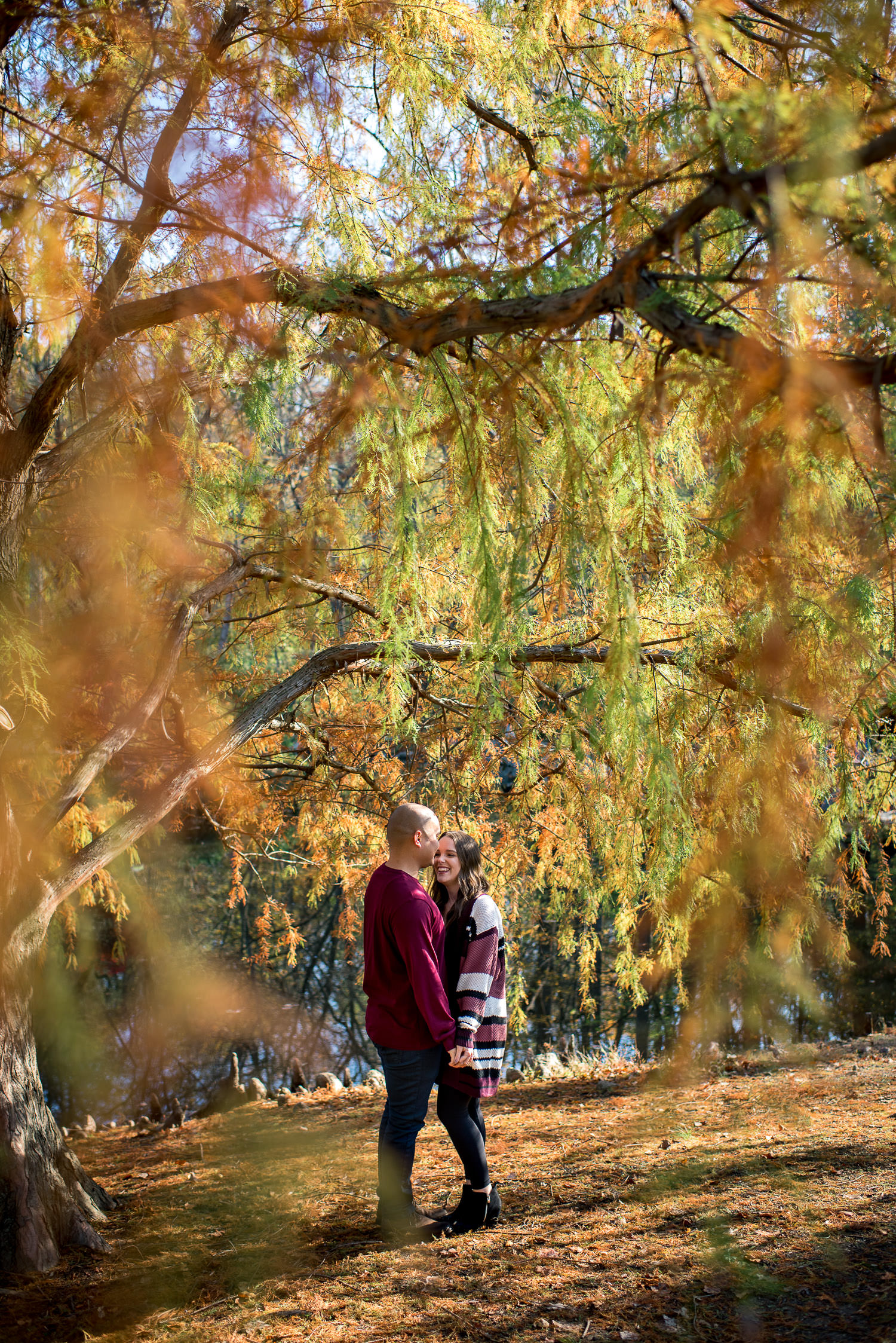 morning engagement session at Brookside Gardens in Washington DC