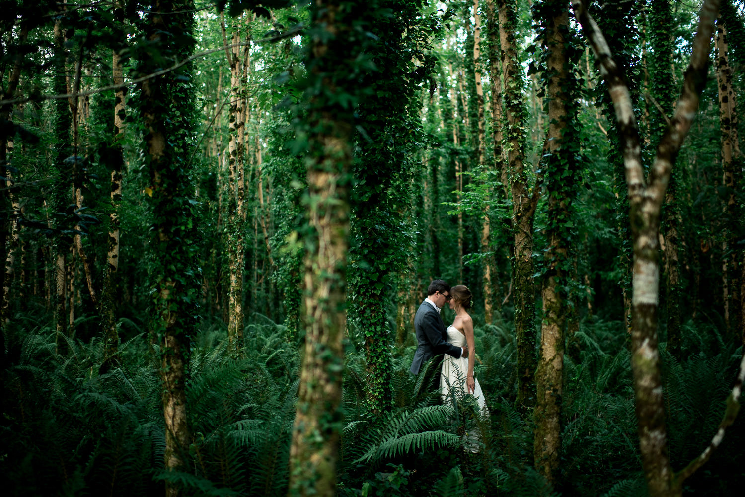 destination wedding portrait of bride and groom kissing in the woods in Ireland