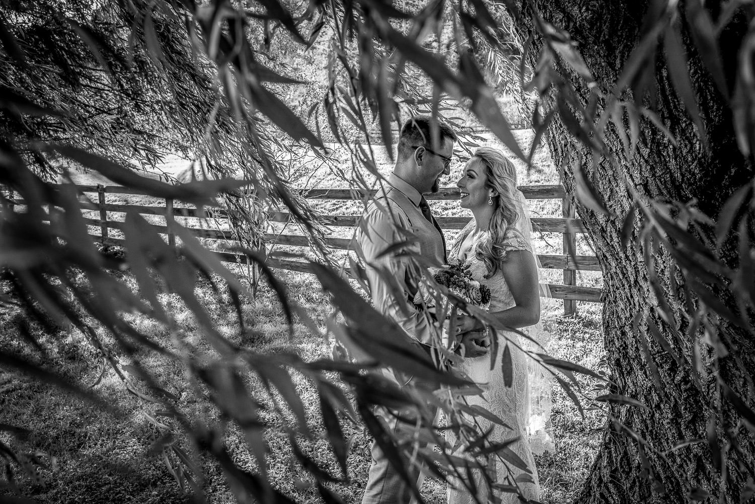 black and white portrait shot through a willow tree